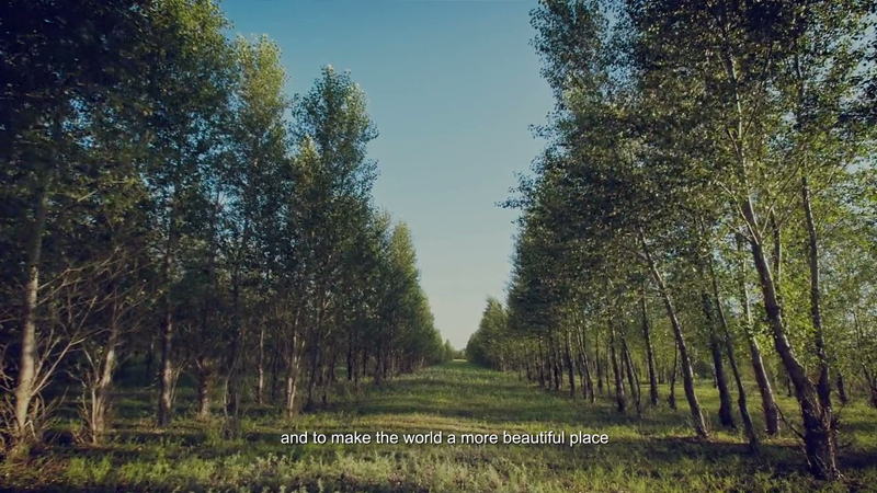 Plant My Pledge #7 Molly Gong - Timberland Horqin Desert Reforestation Project-HD-4
