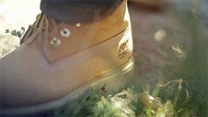 Timberland - The Horqin Desert Reforestation Project 2014