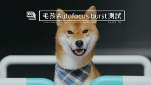 Sony Xperia XZ1 - XLab Autofocus Burst